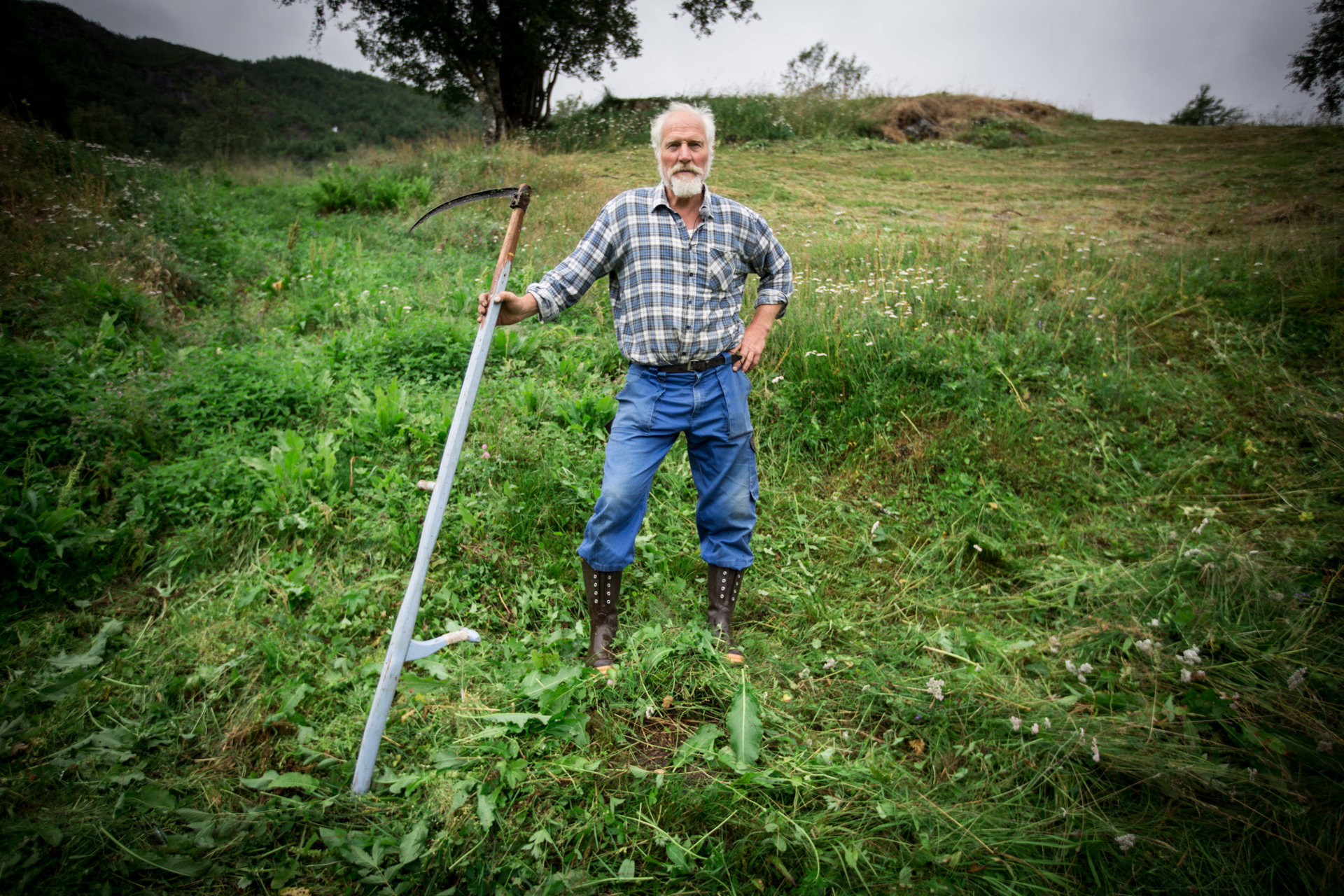 Farmer Terje Nystabakk cuts the grass on his fields with the old school scythe